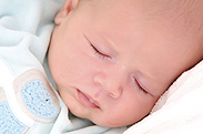Babygalerie Storchennest